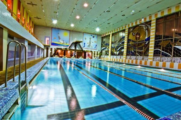 Клубы зебра в москве с бассейном ночной клуб эгоистка москвы